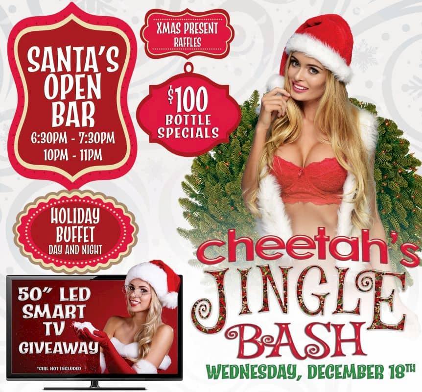Cheetah-Jingle-Bash (1)